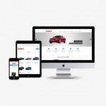 Admita Website